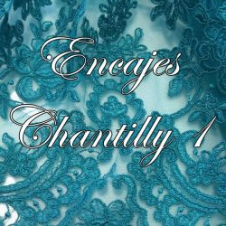 Encajes Chantilly 1