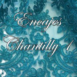 Encajes Chantilly 1