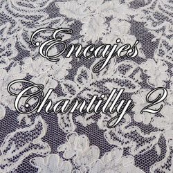 Encajes Chantilly 2