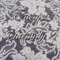 Encajes Chantilly 2