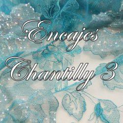 Encajes Chantilly 3